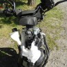 Cassetom -  Aprilia 50 SR50 de  2019 - Nos scooters accidentés