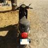 Cassetom -  Orcal 50 LJ50QT de  2016 - Nos scooters accidentés