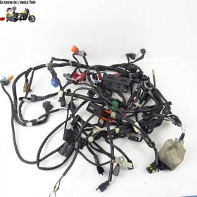 Faisceau électrique Honda...