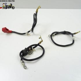 Câble de batterie Triumph...