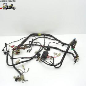 Faisceau électrique Yamaha...