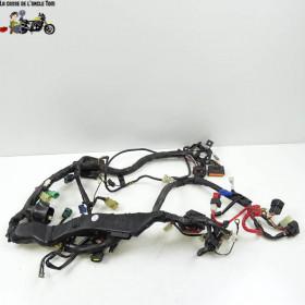 Faisceaux électrique Yamaha...